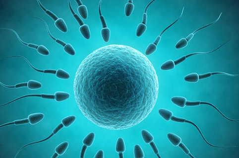 Améliorer-la-qualite-de-son-sperme