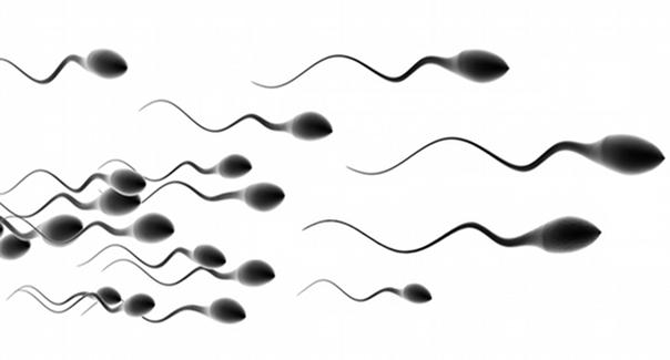 faible-quantité-du-sperme-